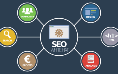 Onsite SEO vs Offsite SEO — Why are they Important?